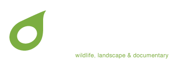Tim Collier Photography