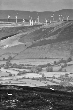 A picture of windfarms dominating and disfiguring the landscape